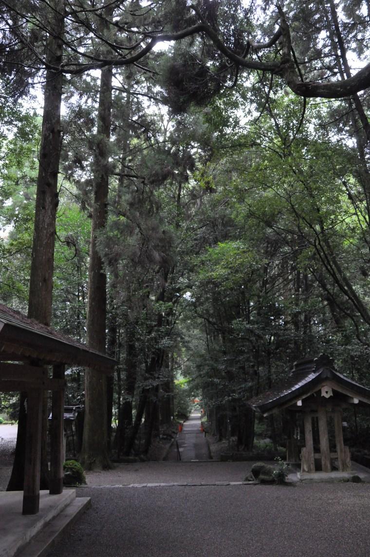 挟野神社参道